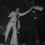 Elvis in action